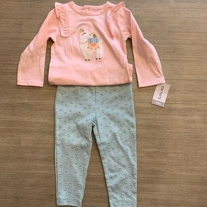 Baby Girl Two Piece Outfit